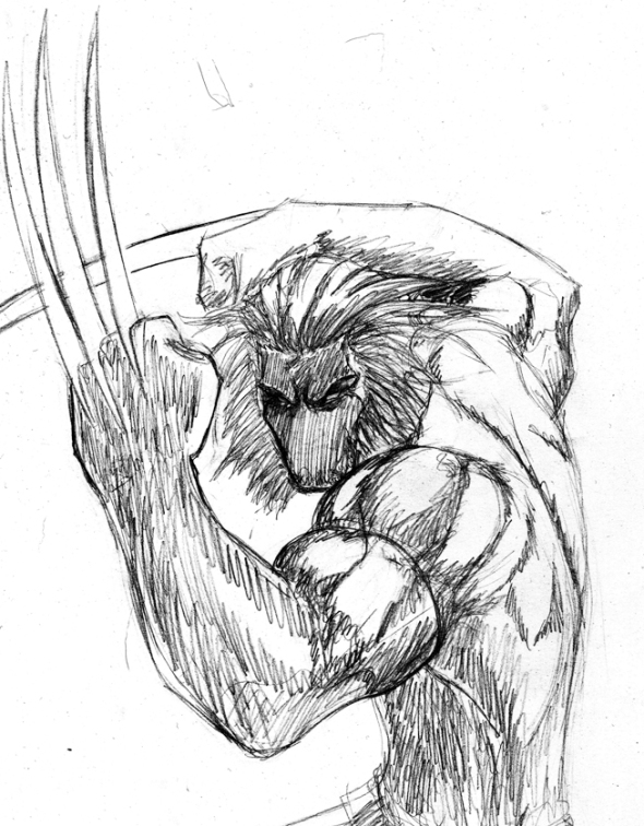 wolverine sktch sized
